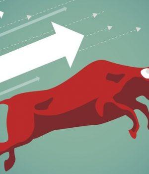 शेयर बजारमा नयाँ रेकर्ड कायम, साढे ७ अर्ब बढीको कारोबार